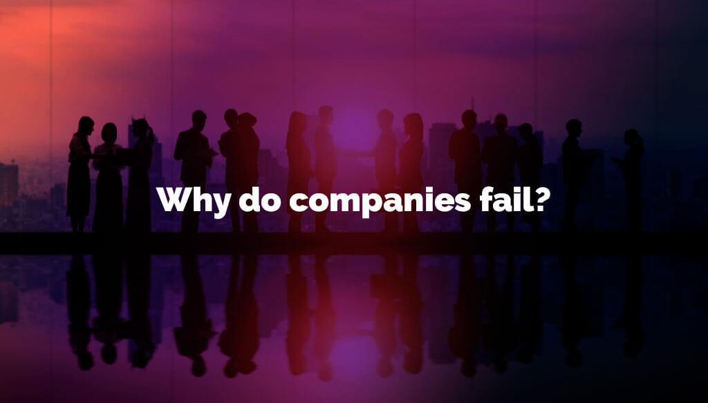 Why do companies fail?
